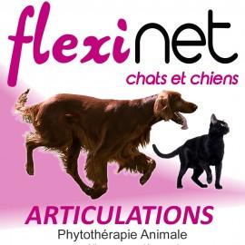 FLEXINET Confort et Souplesse Articulaire des Animaux en 250 ml - 500 ml et 1 L