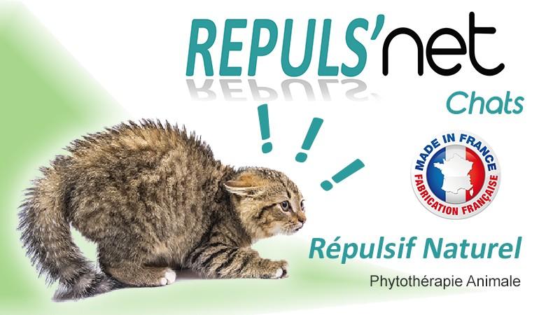 Répulsif naturel pour chats