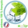 MENTHE FRAICHE Openvap - e-liquide pour cigarettes électroniques 10 ml