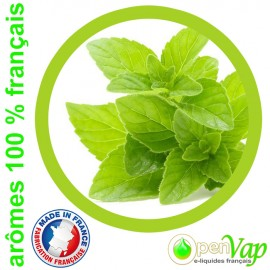 MENTHE VERTE Openvap - e-liquide pour cigarettes électroniques 10 ml