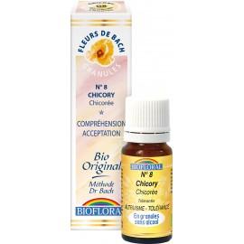Elixir Floral Sans Alcool en Granules – 008 CHICOREE