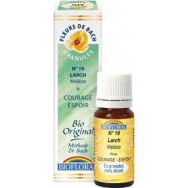 Elixir Floral Sans Alcool en Granules – 019 MELEZE
