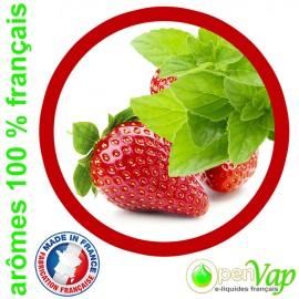 FRAISE MENTHE Openvap - e-liquide pour cigarettes électroniques 10 ml