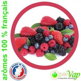 FRUITS ROUGES Openvap - e-liquide pour cigarettes électroniques 10 ml